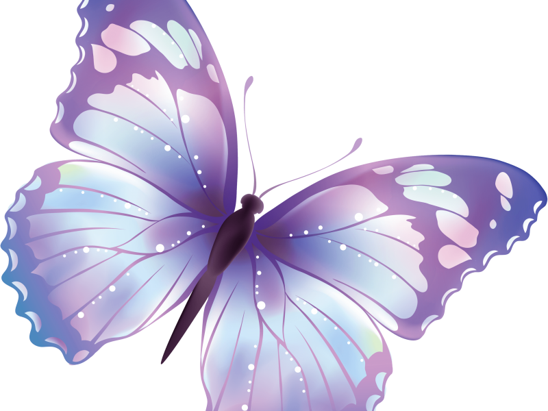 54-flying-butterfly-png-image